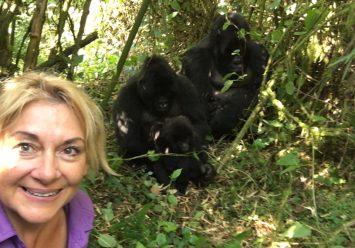 An African Adventure: Gorillas