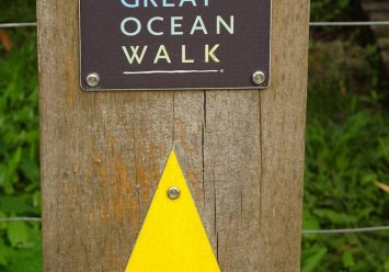 The Great Ocean Road Walk Part Two